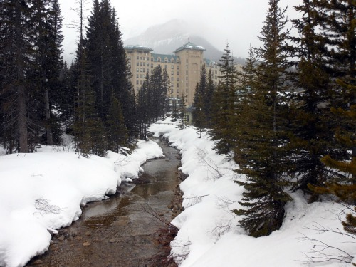 Chateau Lake Louise - Rockies