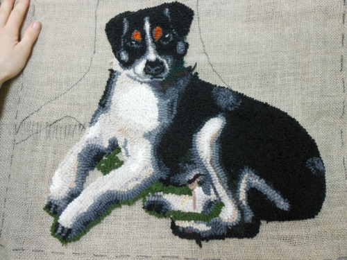 Black and White Terrier hooked by Katrina