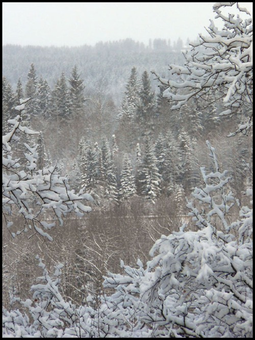 Distant Snowy View