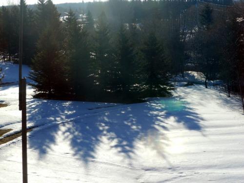 Morning shadows in Edmonton