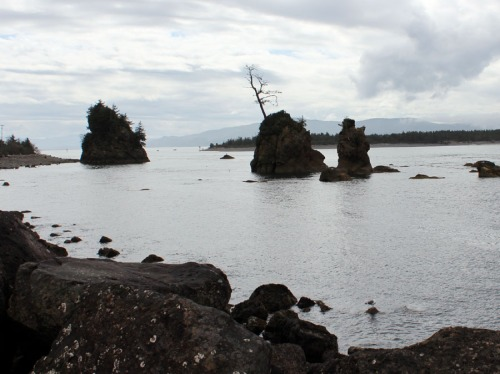 3 islands called '3 Sisters' in a bay near Garibaldi, OR