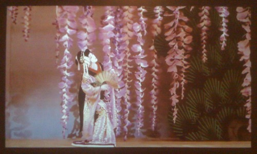 Japanese dancer with giant wisteria blossoms
