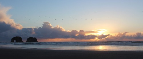Rockaway Beach Sunset w/birds - photo by Laura Pierce