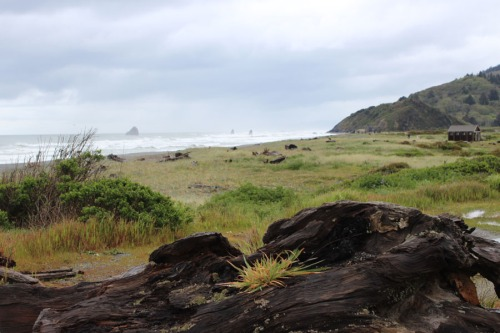Cloudy weather on the Oregon Coast